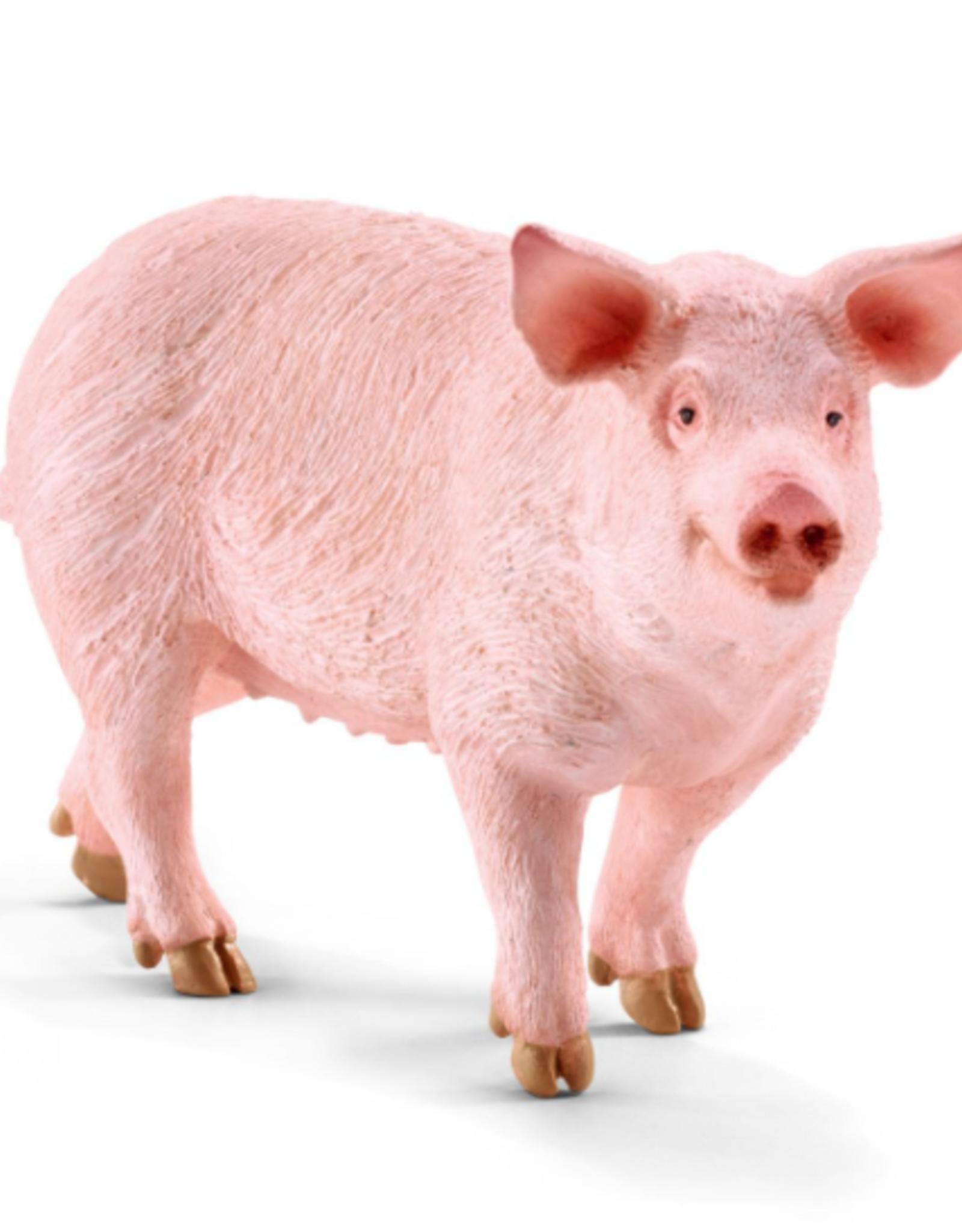 Schleich Schleich Pig
