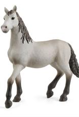 Schleich Schleich Pura Raza Española Young Horse