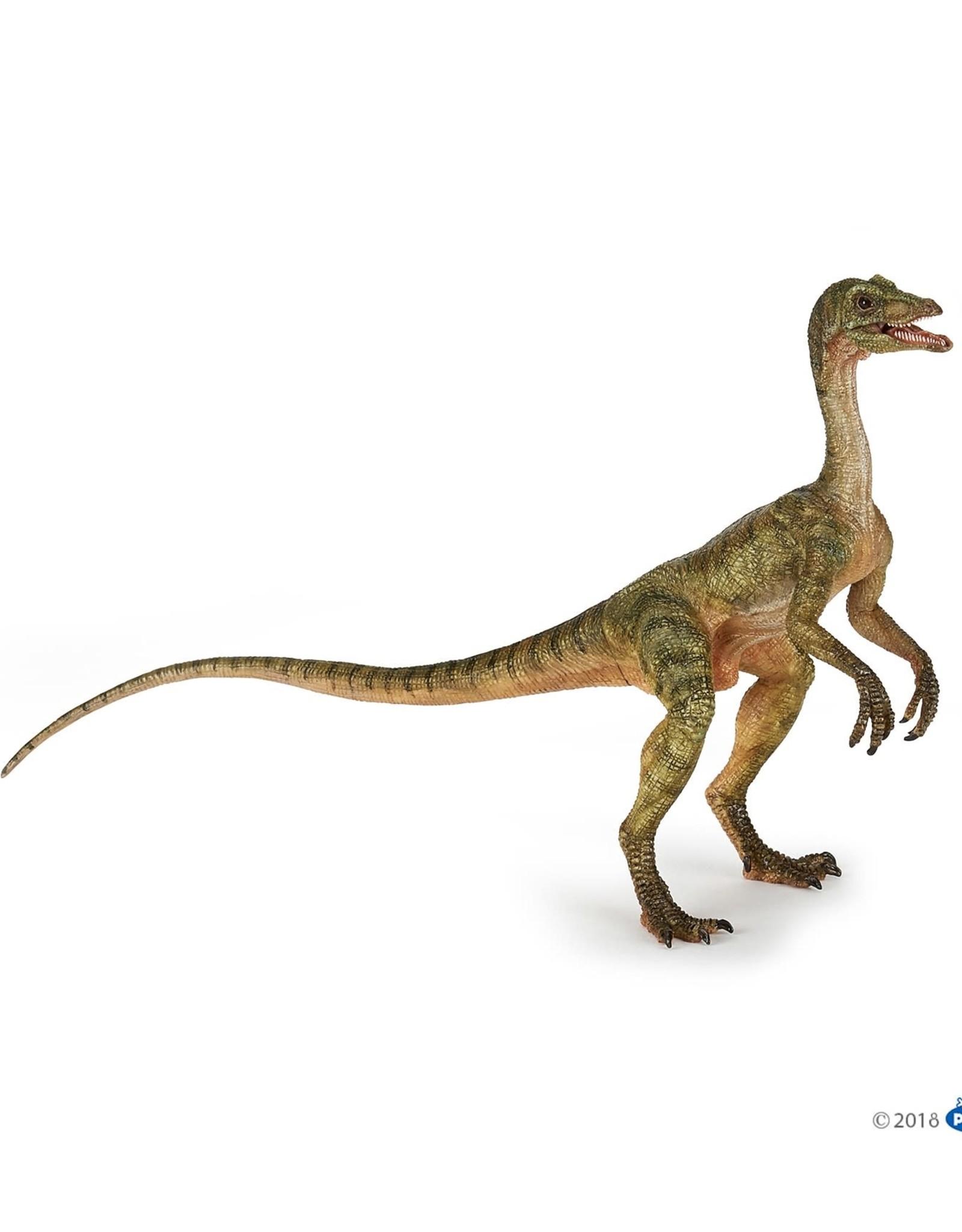 Papo Papo Compsongnathus