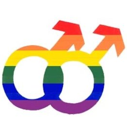 RAINBOW DOUBLE MALE SYMBOL STICKER