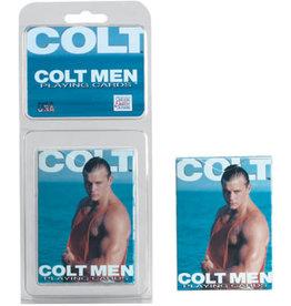 CAL EXOTICS PLAYING CARDS, COLT, COLT MEN / BULK