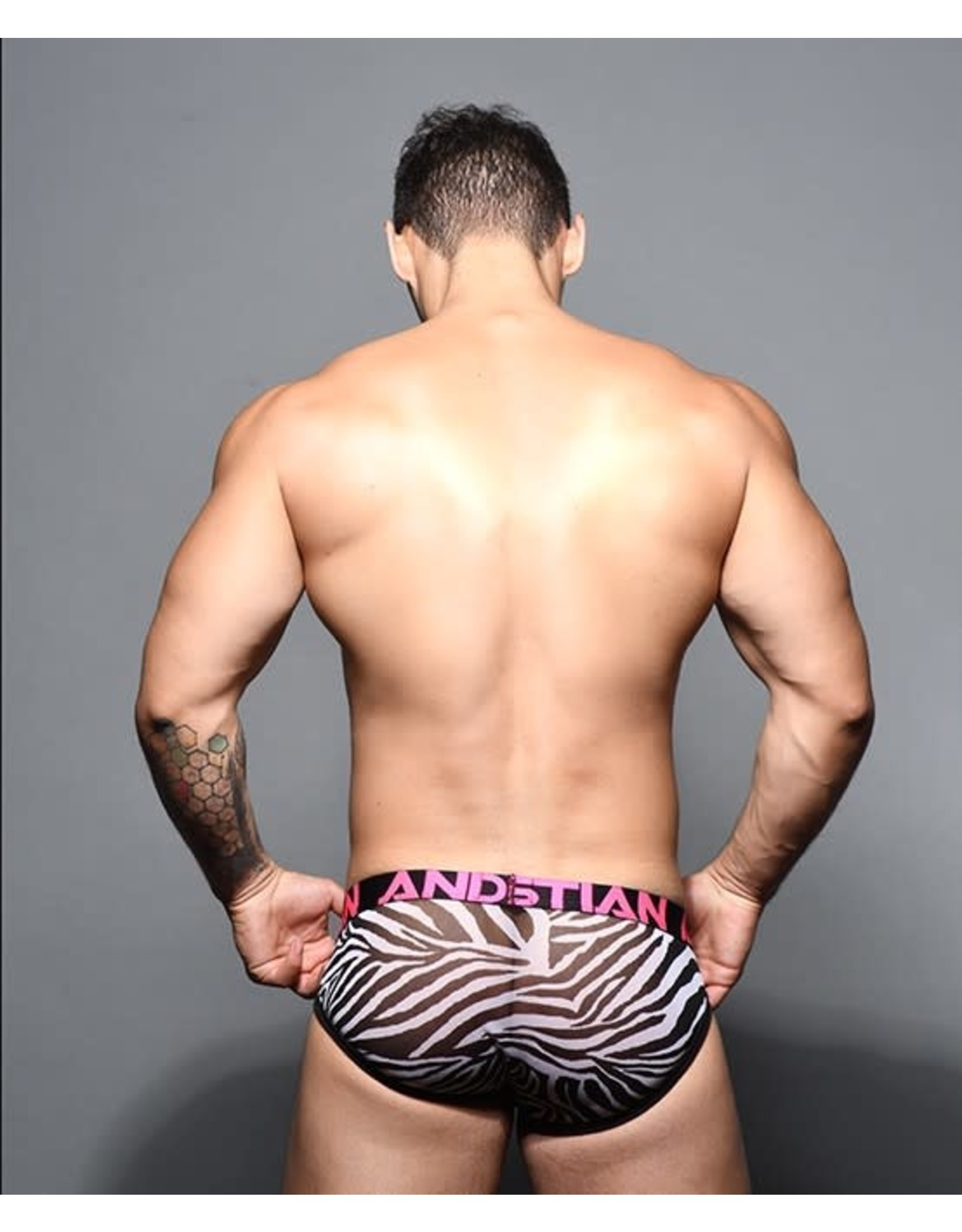 ANDREW CHRISTIAN ANDREW CHRISTIAN SHEER MESH ZEBRA BRIEF W/ ALMOST NAKED