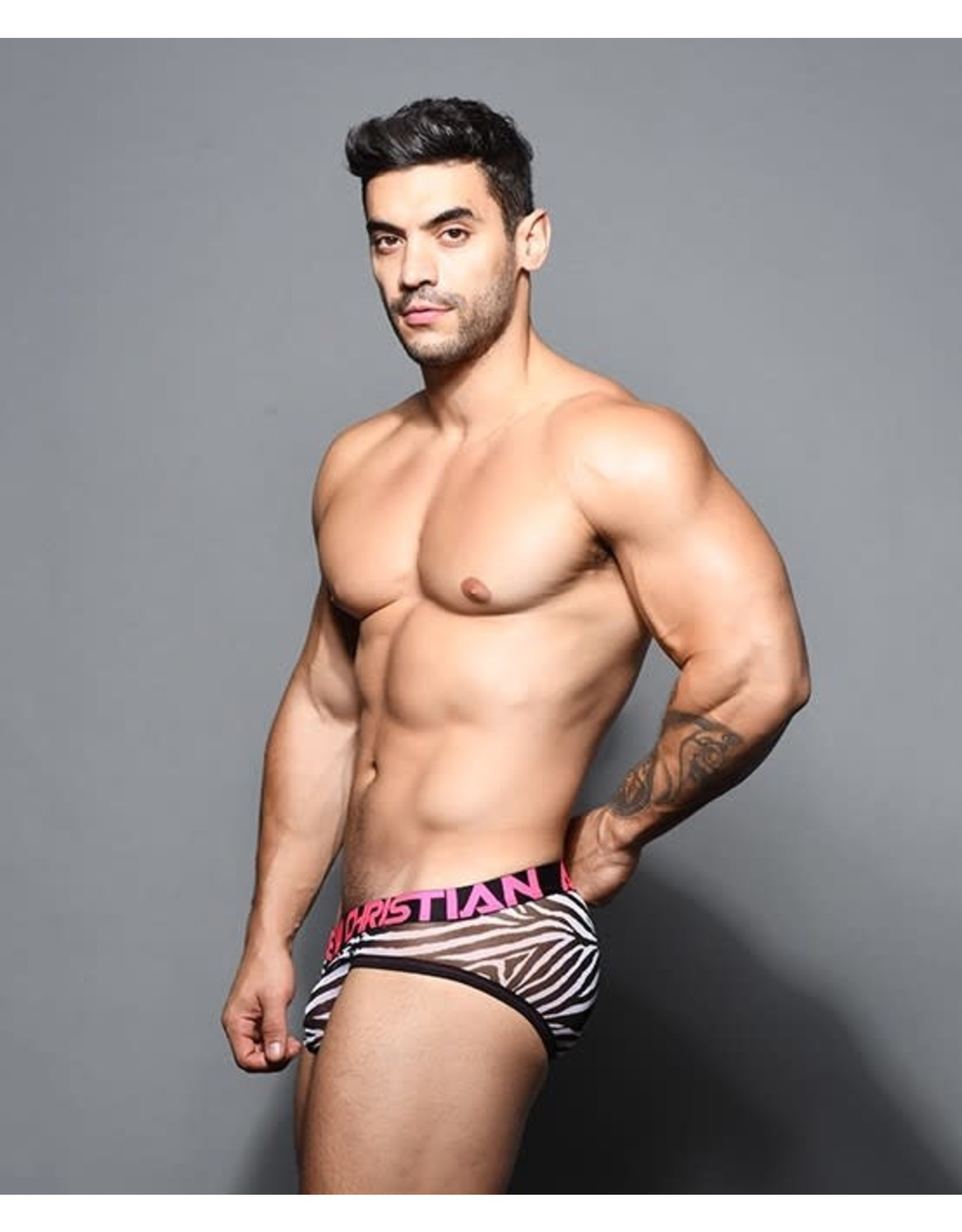 ANDREW CHRISTIAN AC SHEER MESH ZEBRA BRIEF W/ ALMOST NAKED