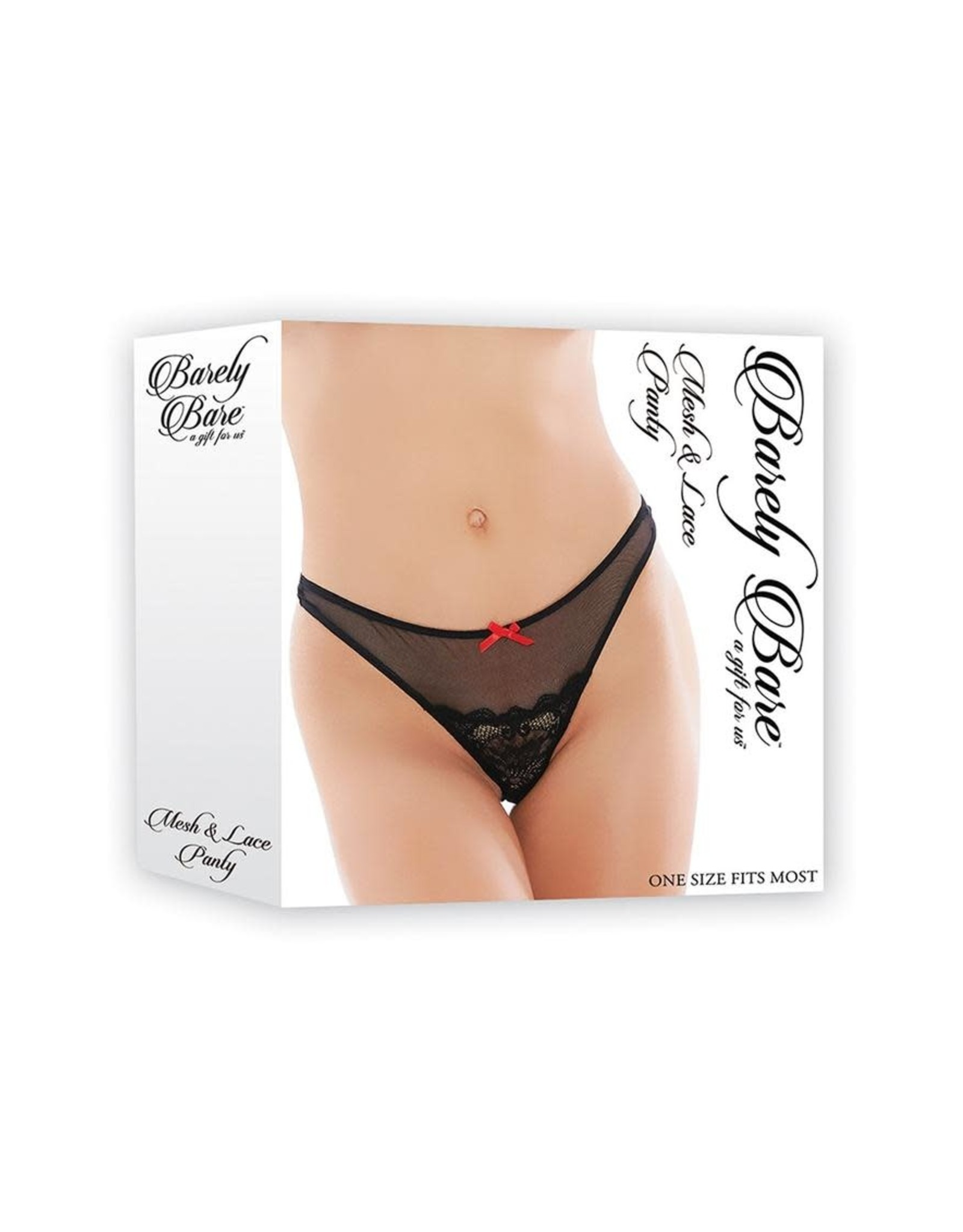 BARELY BARE MESH AND LACE PANTY ONE SIZE