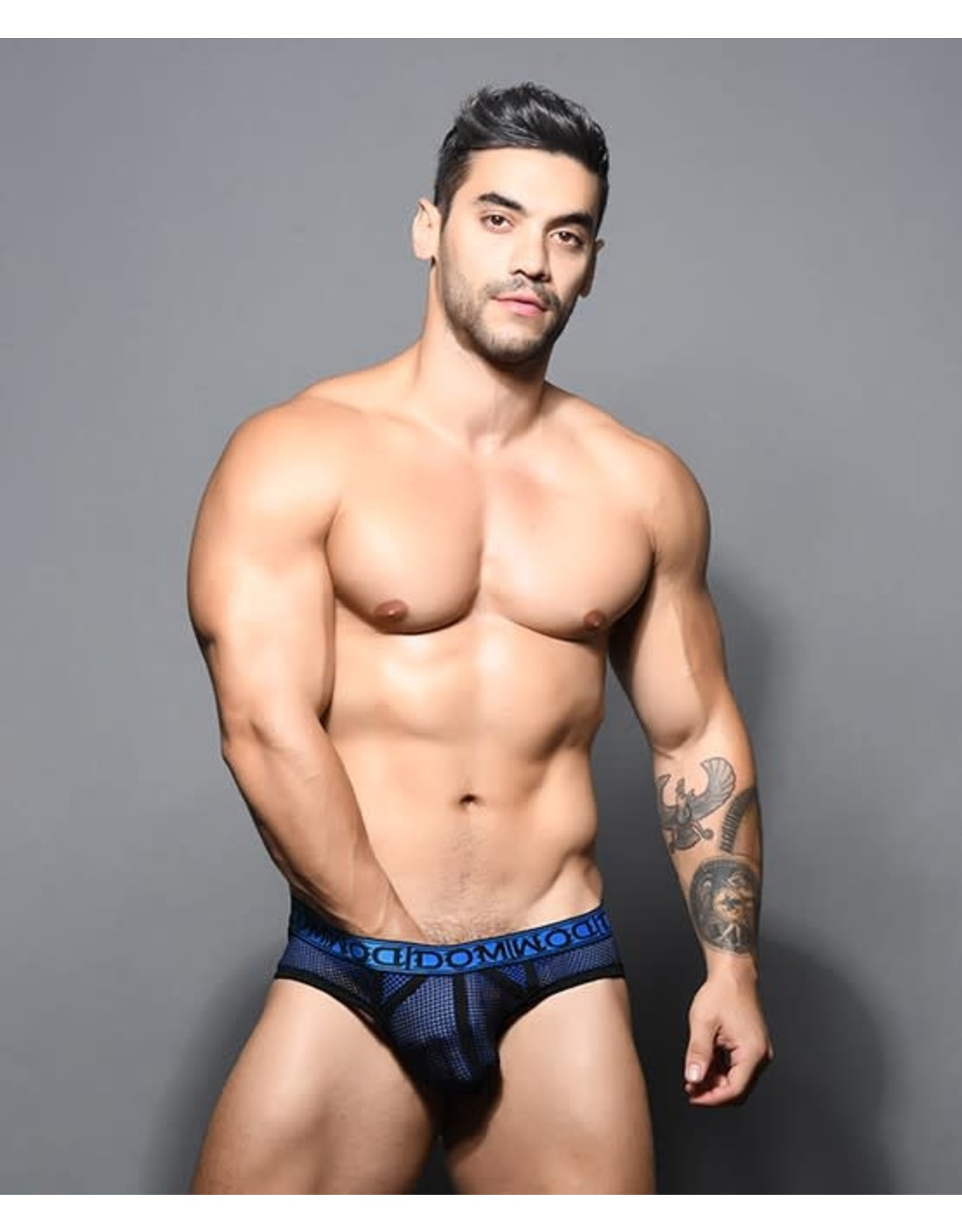 ANDREW CHRISTIAN ANDREW CHRISTIAN DOM DOUBLE-MESH BRIEF