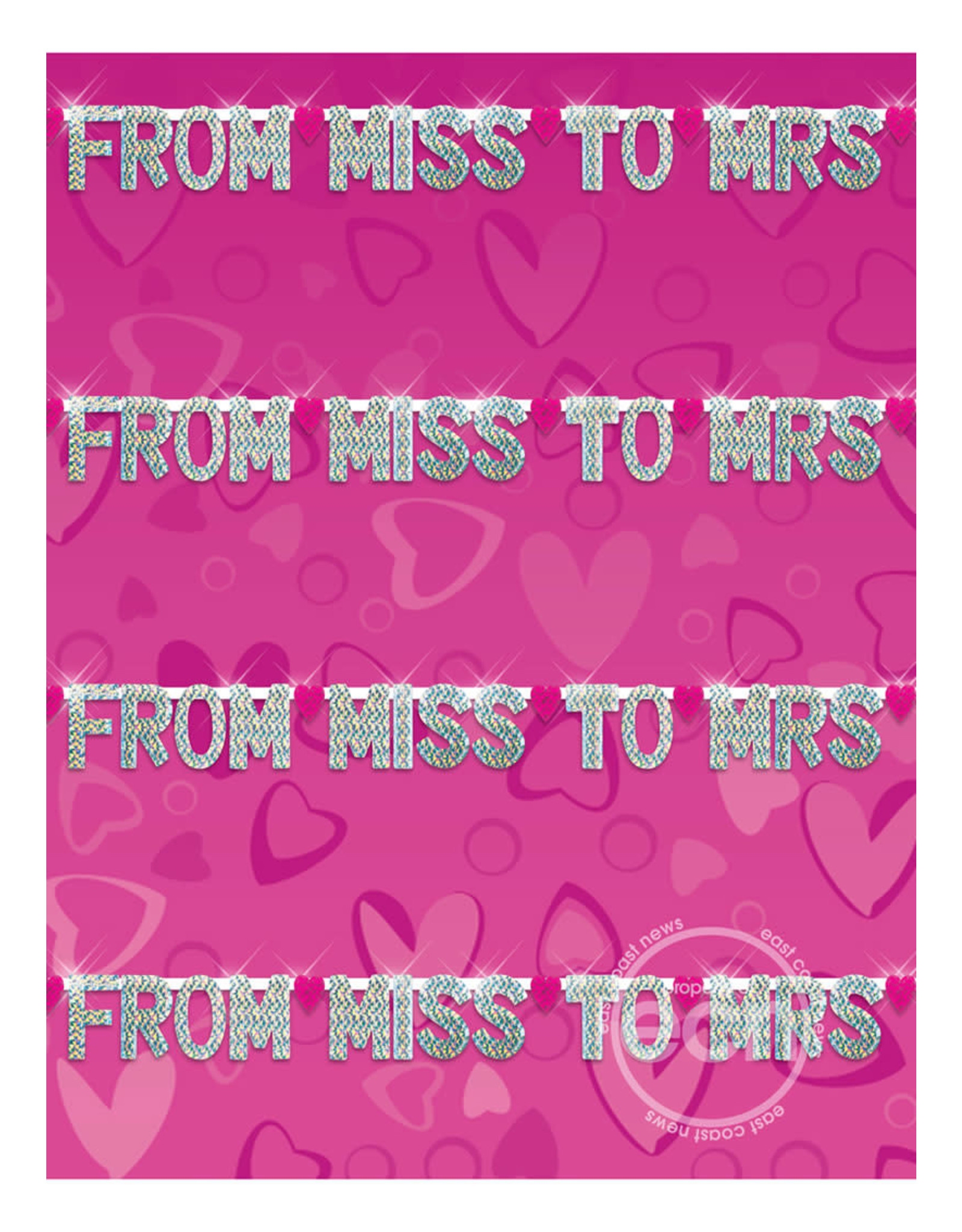 PIPEDREAM PRODUCTS BACHELORETTE PARTY FAVORS FROM MISS TO MRS BANNER