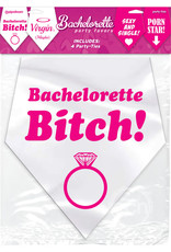 PIPEDREAM Bachelorette Party Favors Party Ties 4 Each Per Pack