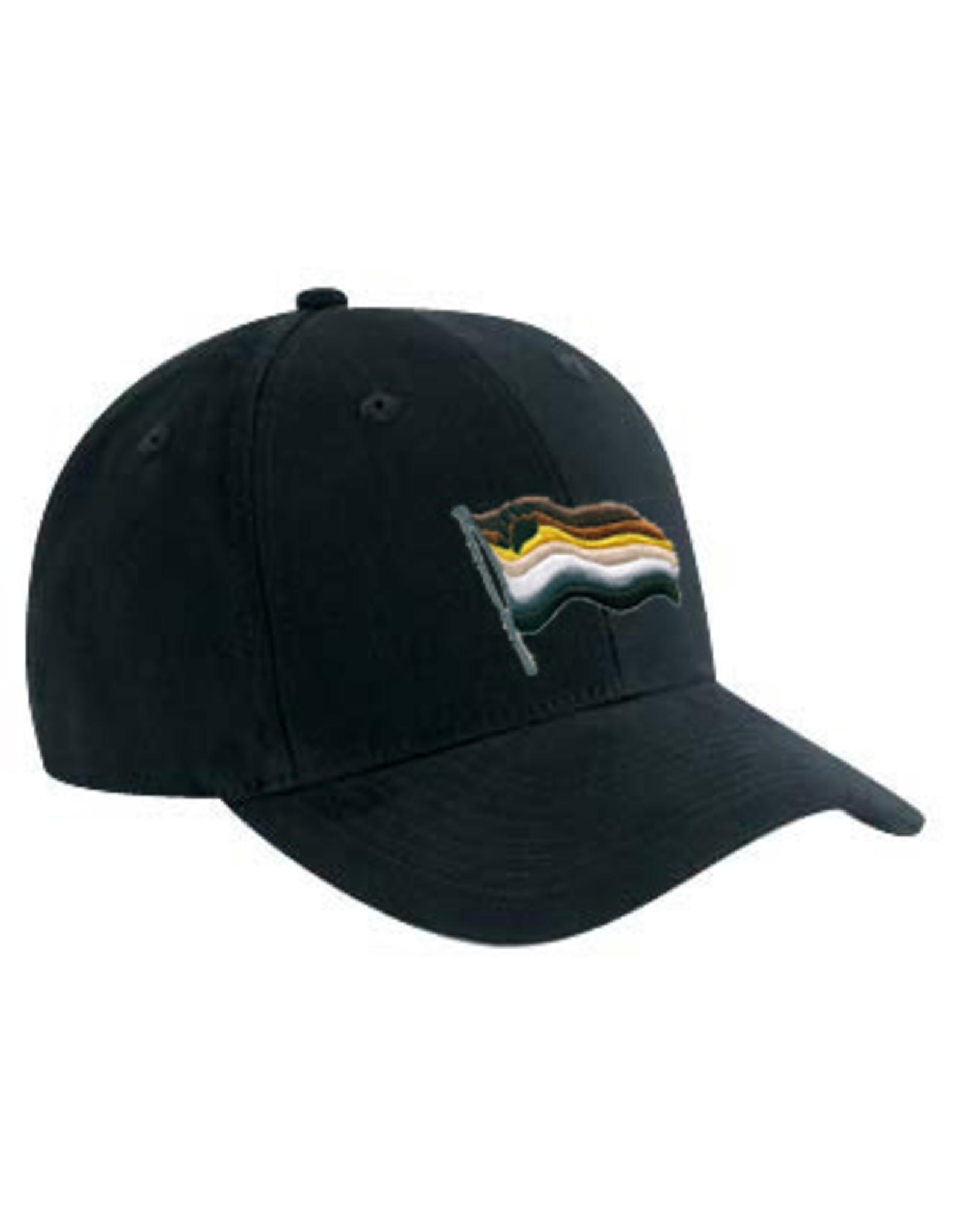 RAINBOW BEAR PRIDE WAVY FLAG EMBROIDERED BLACK CAP