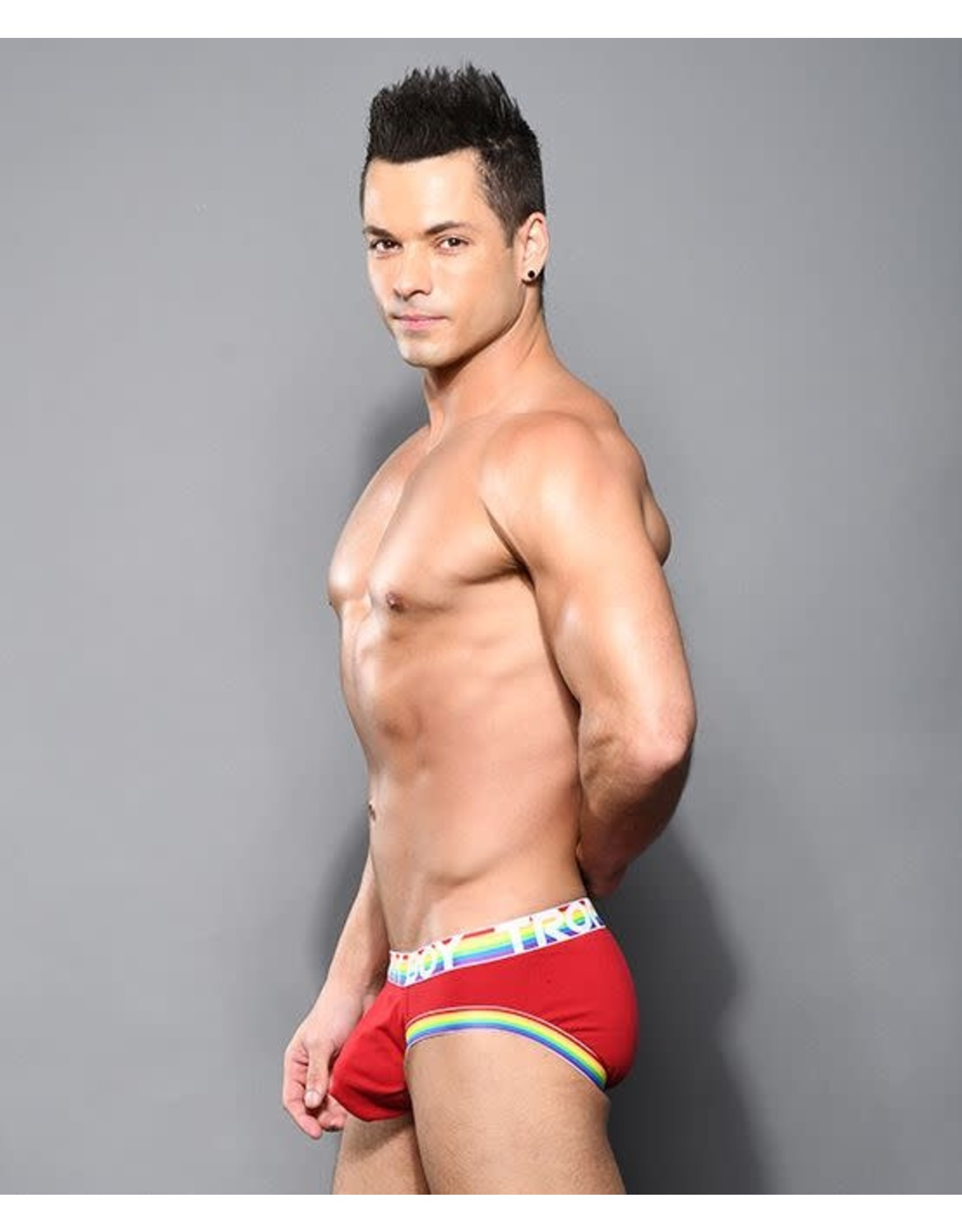 ANDREW CHRISTIAN ANDREW CHRISTIAN TROPHY BOY PRIDE BRIEF