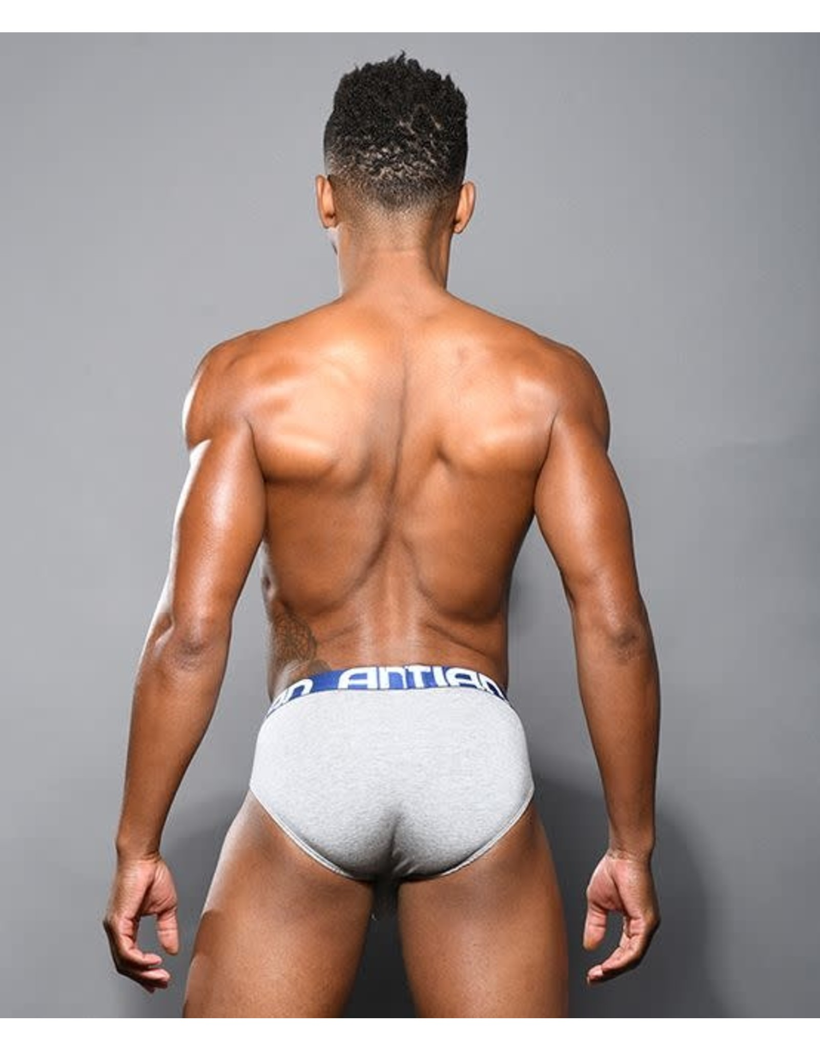 ANDREW CHRISTIAN ANDREW CHRISTIAN ALMOST NAKED BAMBOO BRIEF GRAY