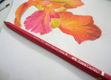 Faber-Castell Albrecht Durer Watercolor Pencils Inspiration