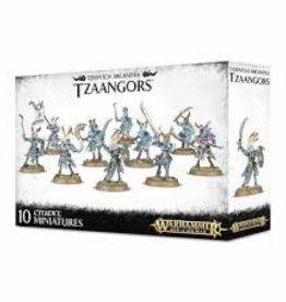 Games Workshop Warhammer Age of Sigmar TZEENTCH ARCANITES TZAANGORS