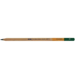 Royal Talens Bruynzeel Design Coloured Pencil Dark Green