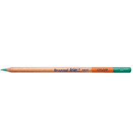 Royal Talens Bruynzeel Design Coloured Pencil Green