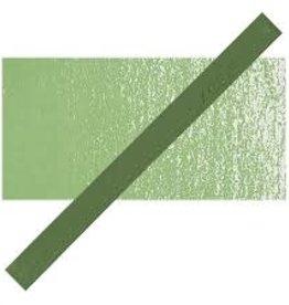 PRISMACOLOR Prismacolor 408 P Fern Green NupAStel