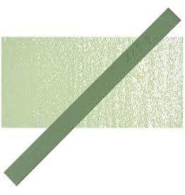 PRISMACOLOR Prismacolor 448 P Eden Green NupAStel