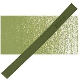 PRISMACOLOR Prismacolor 308 P Palm Green NupAStel