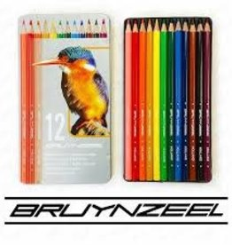 Royal Talens Bruynzeel Colour Pencil Tin Set Of 12 - Bird