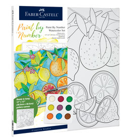 FABER-CASTELL PAINT BY NUMBER PRODUCE