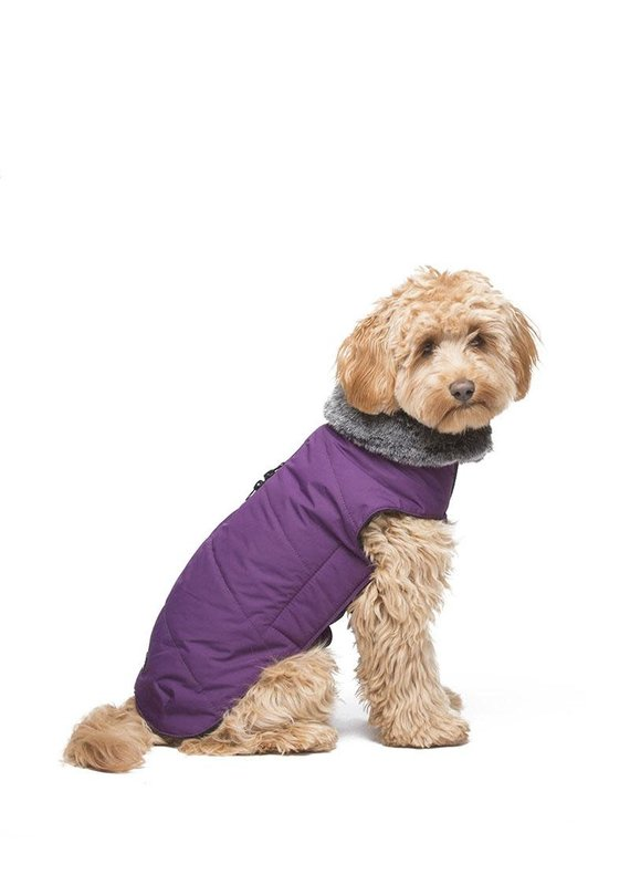 D.GS Pet Products Dog Gone Smart Royal Purple Tamarack Dog Jacket