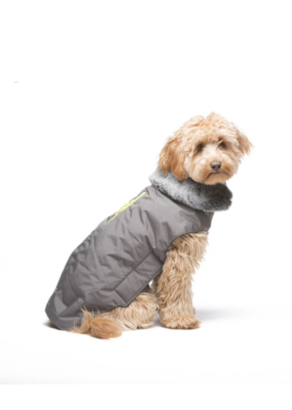 D.GS Pet Products Dog Gone Smart Steel Grey w/ Yellow Zipper Tamarack Dog Jacket
