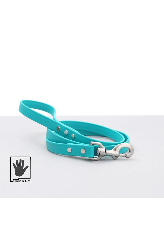 Mimi Green Mimi Green Waterproof Leather Alternative Dog Leash 6-ft