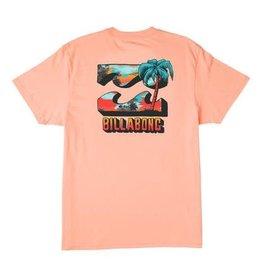 billabong Billabong Boys BBTV S/S Tee ABTZT00117