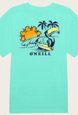 oneill Oneill Boys Cruiser S/S Tee FA1218304
