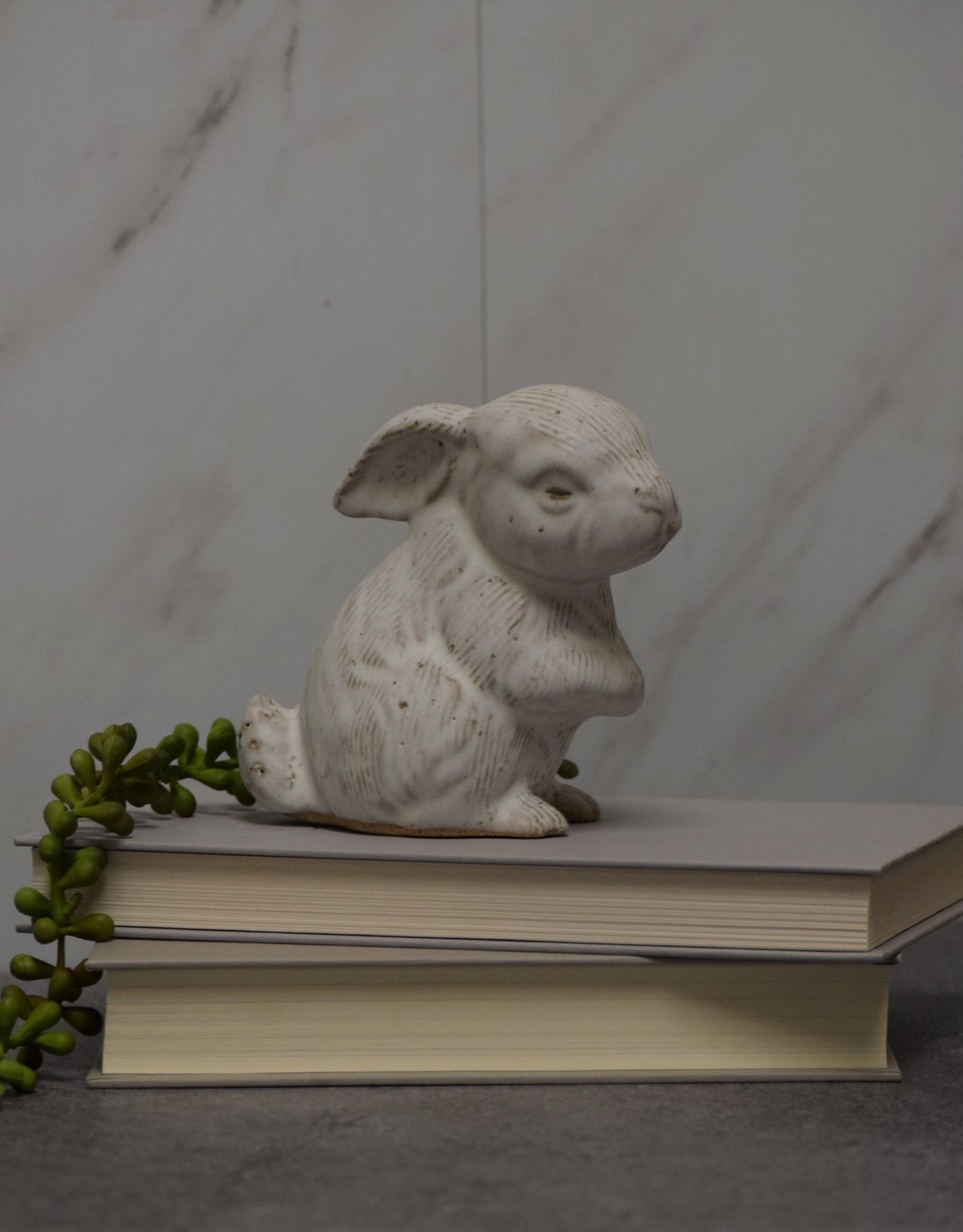 Daisy Rabbit