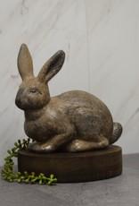Sandy Rabbit