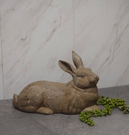 Ted Rabbit