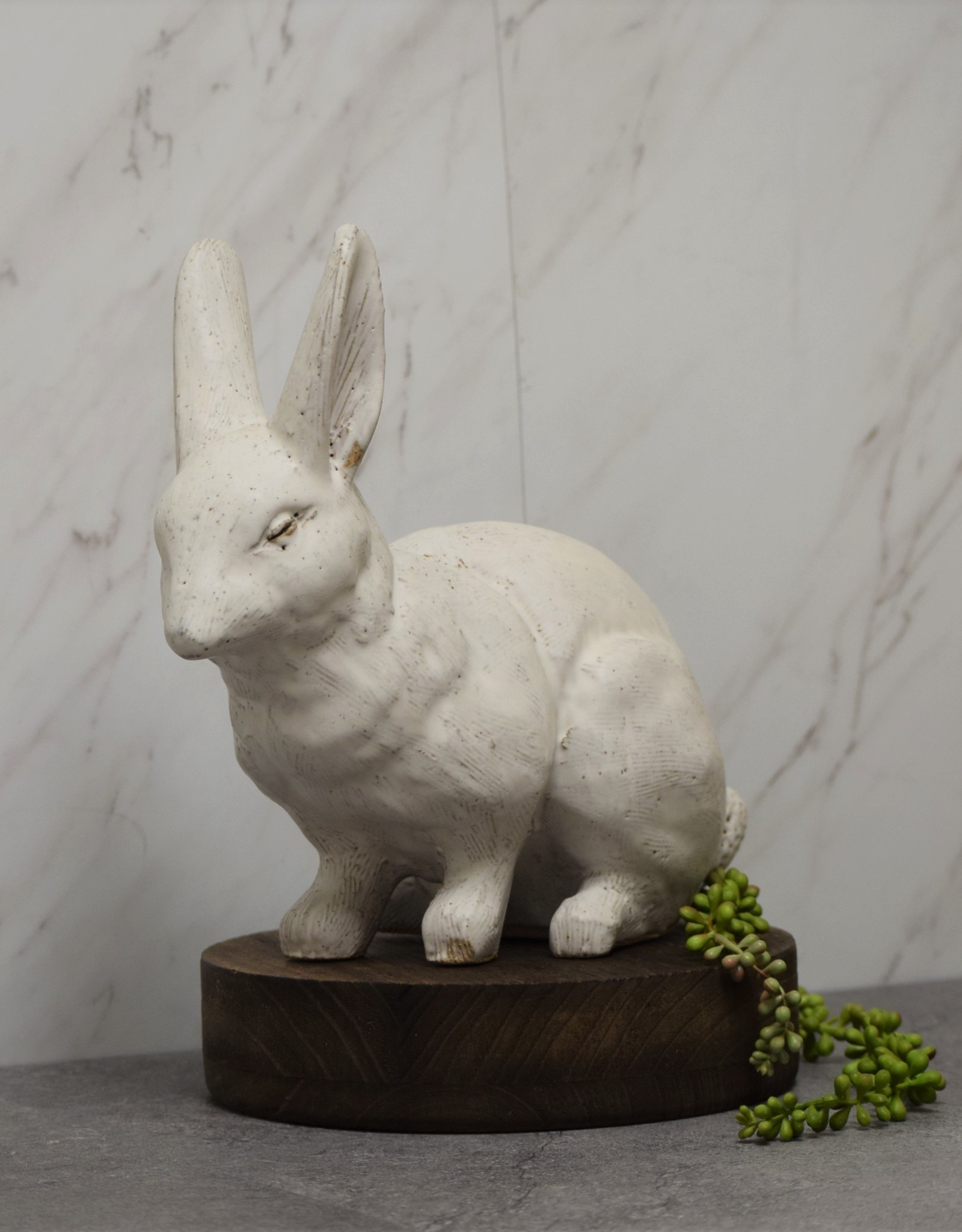 Joseph Rabbit