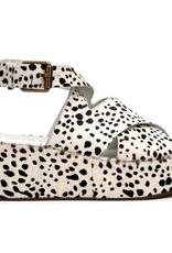 Runaway Dalmatian Platform