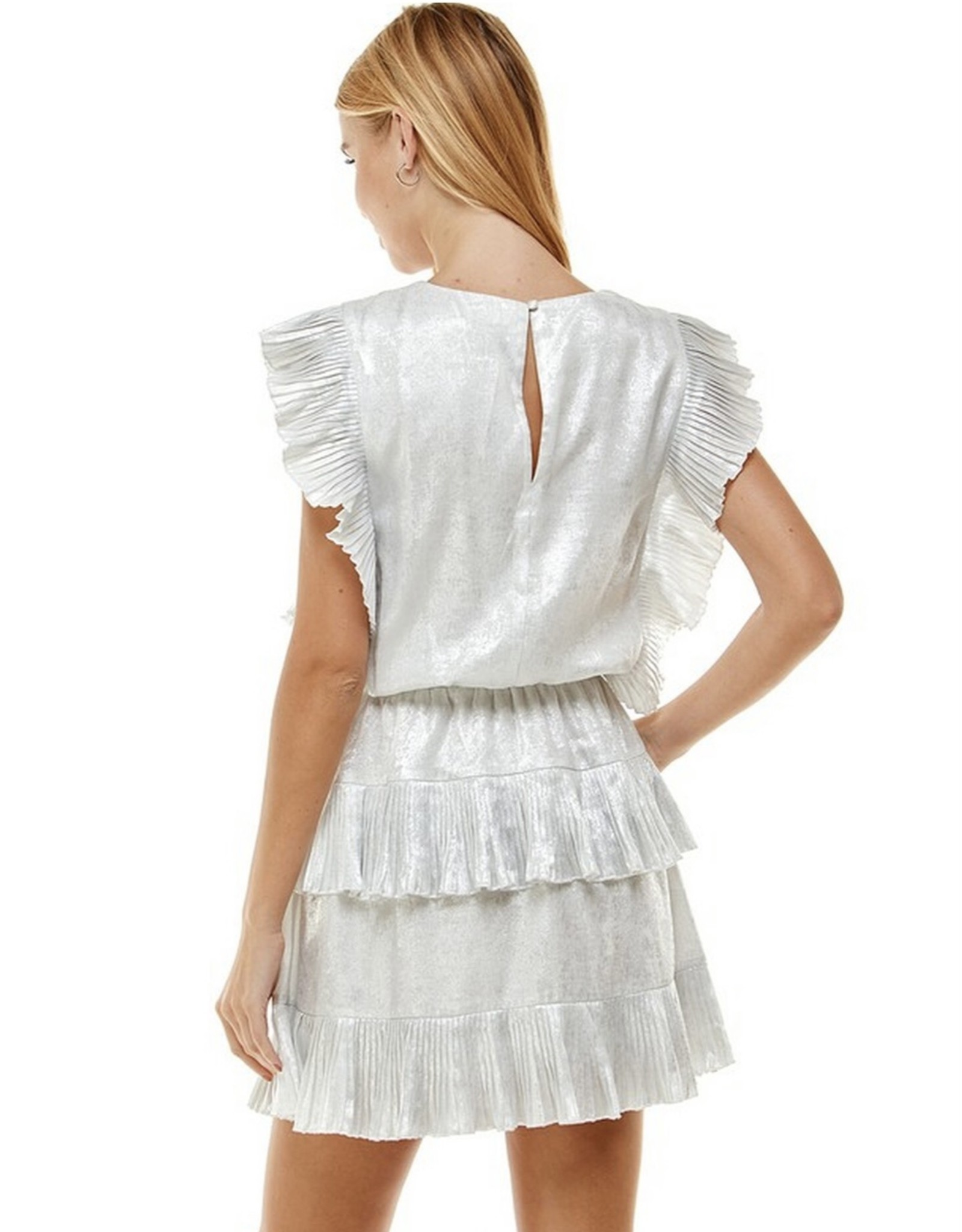 Silver Ruffle Dress