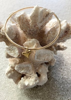FTBM Gold Fill Shark Tooth Bangle