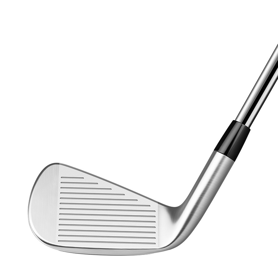 TaylorMade P790 Irons 7pc. (4-PW) - Steel