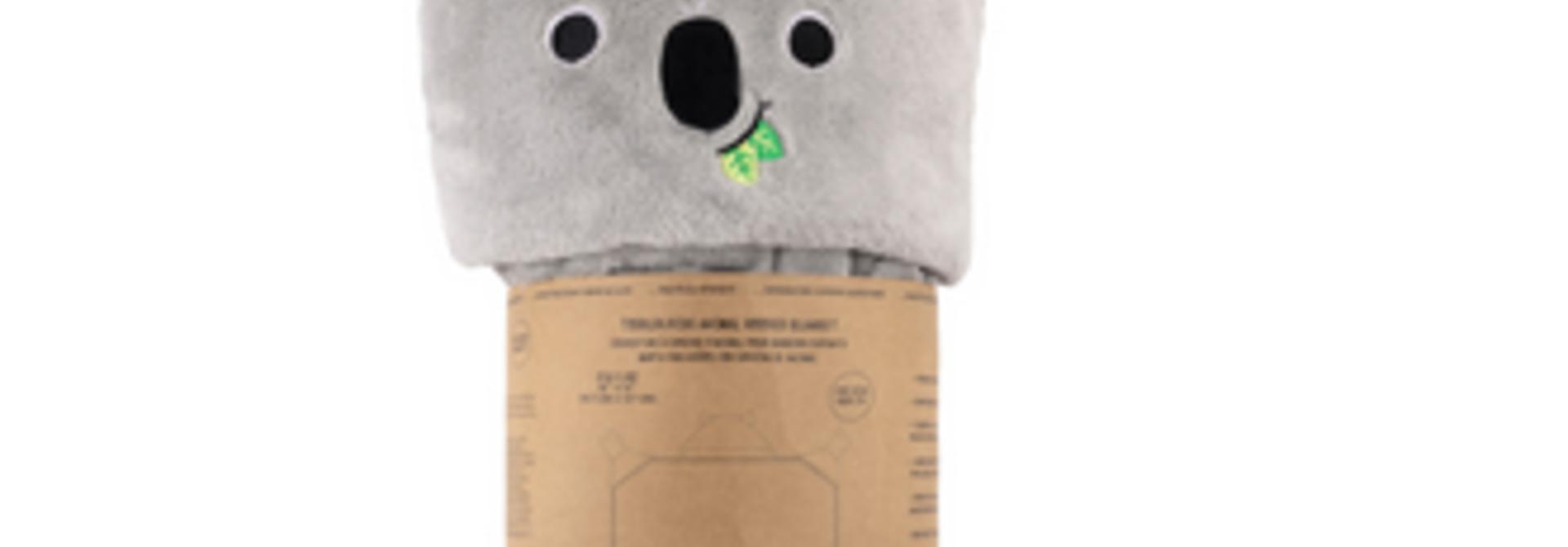 Couverture - Koala