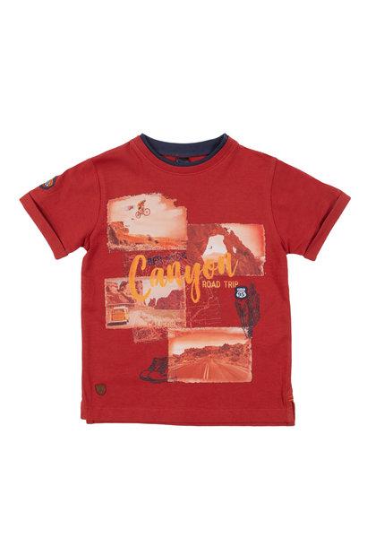 T-Shirt avec imprimé Desert du Nevada
