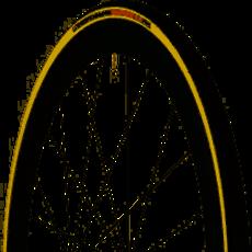 Vittoria Vittoria Corsa G2.0 Tire - 700 x 28, Clincher, Folding, Black/Para, 320tpi