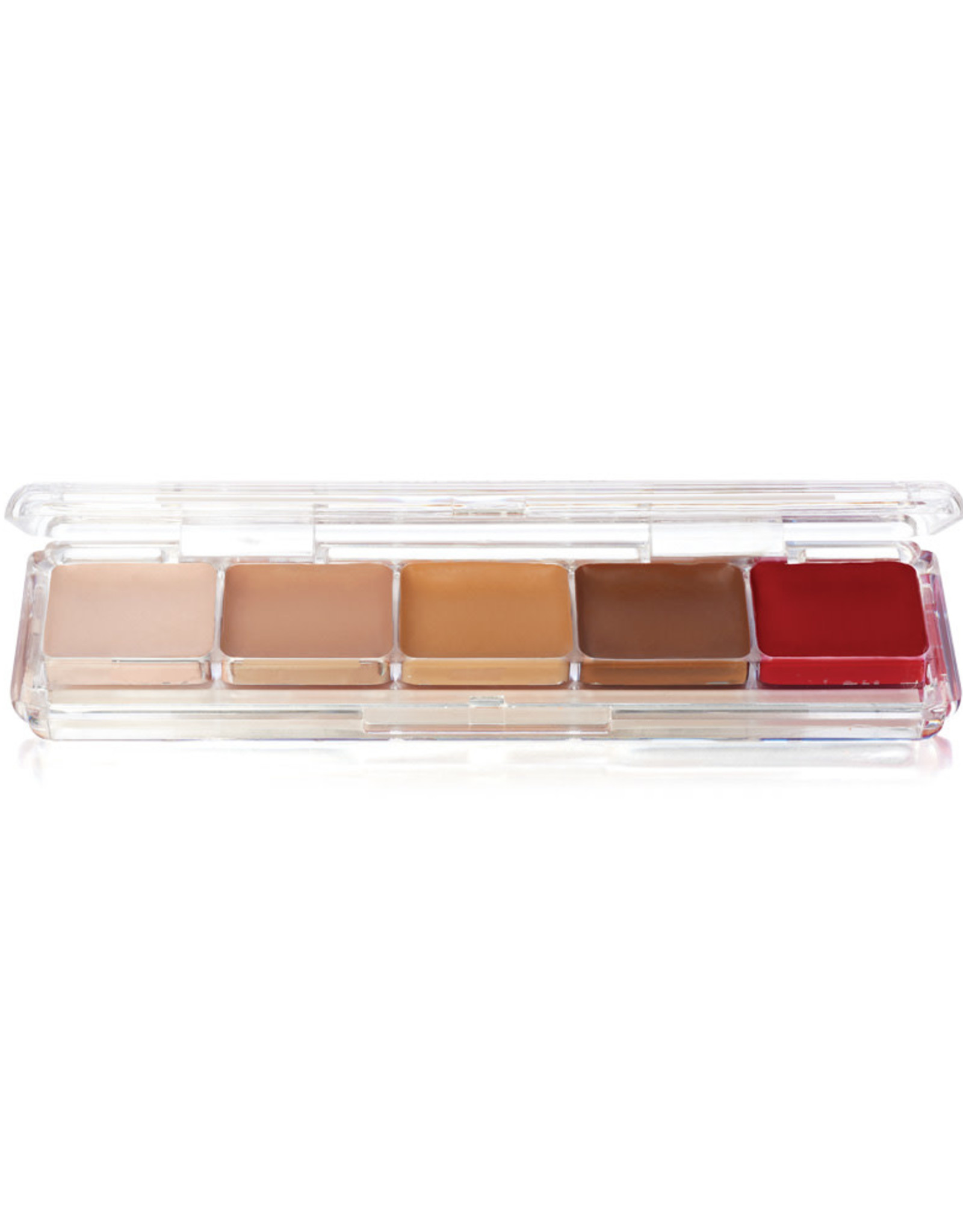 Ben Nye PALETTE-ALCOHOL CONCEALOR PALETTE-TATTOO COVER, 5 SHADES