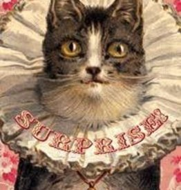 CARD-SURPRISE CAT