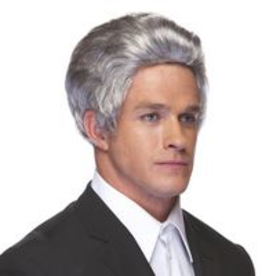 SALESMAN WIG, GREY