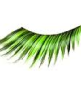 EYELASH-FEATHERED, GRN/BLK