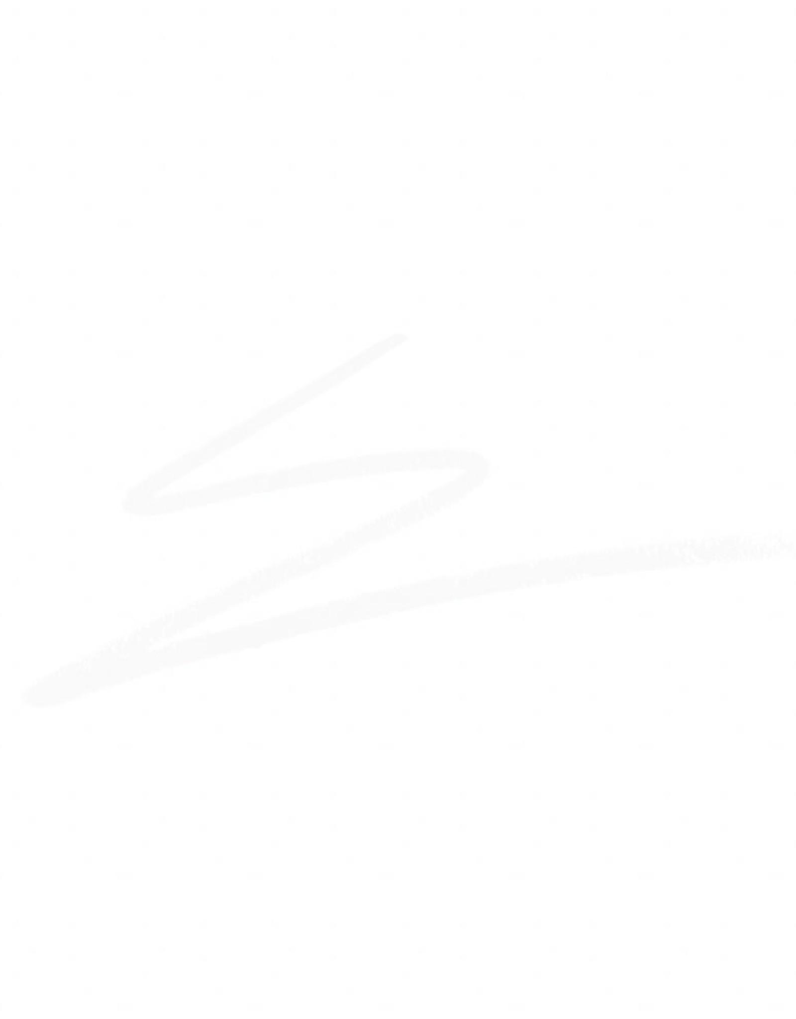 Ben Nye EYEBROW PENCIL, WHITE, .05 OZ