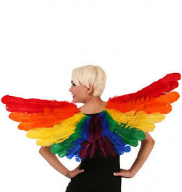 WINGS-FEATHER-RAINBOW