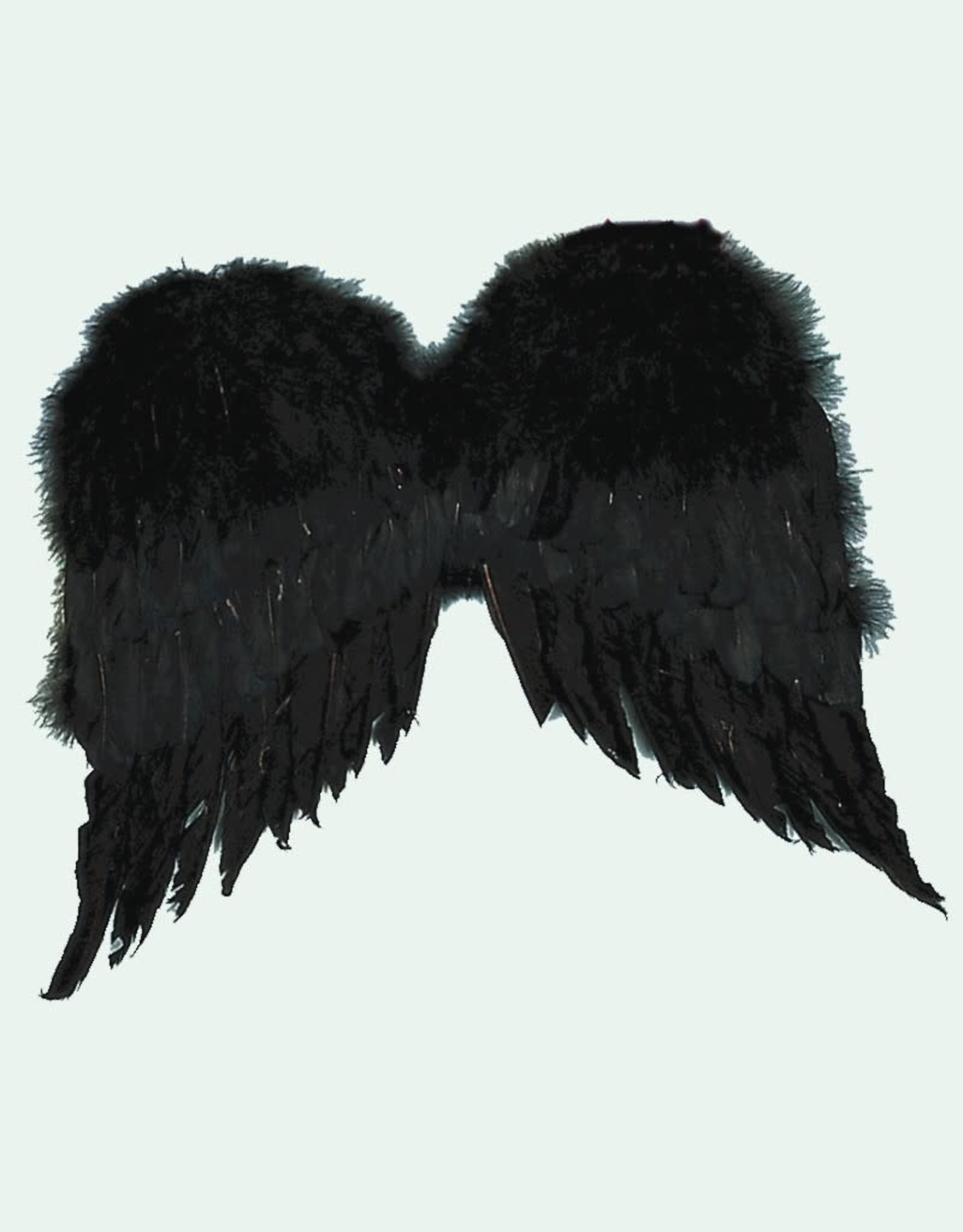 "WINGS-36"" BLACK FEATHER"