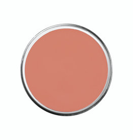 Ben Nye CLOWN PROFESSIONAL CREME, AUGUSTE, 1 OZ
