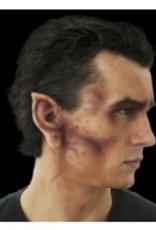 EARS-DEMON, LATEX
