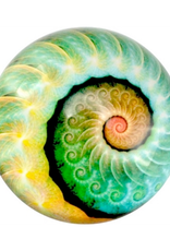 PAPERWEIGHT-GLASS DOME, NAUTILUS