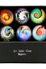 MAGNET SET-GLASS-NAUTILUS, 6PC